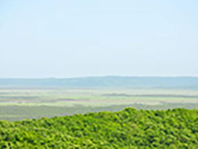 道東の大地に拡がる雄大な釧路湿原