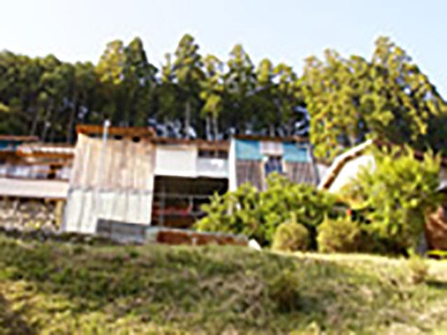 山の斜面に建つ、十津川念法寺