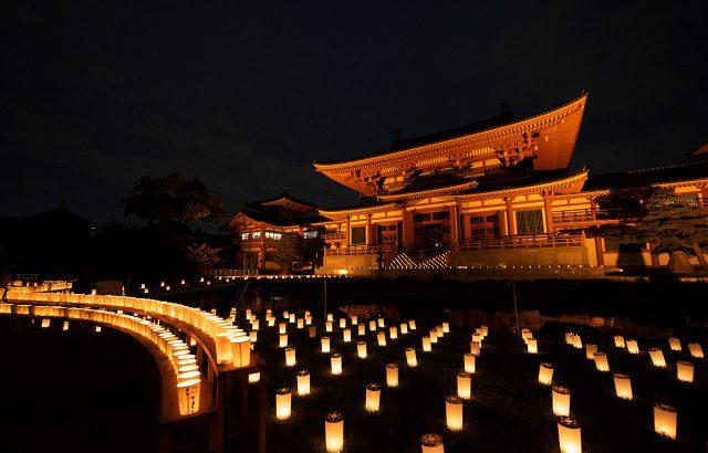 9月:ほの灯り金剛寺