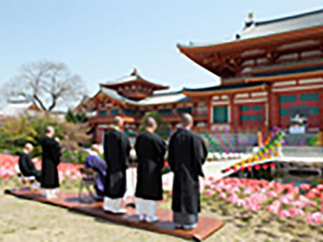 「花びより金剛寺」の開会
