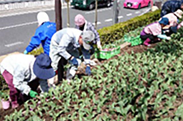 花植え奉仕